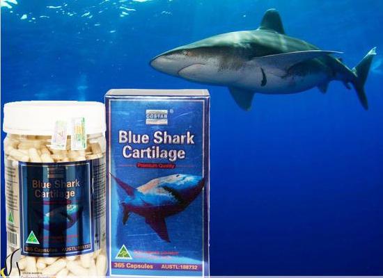 Sụn vi cá mập Shark Cartilage 750mg Costar mua ở đâu?