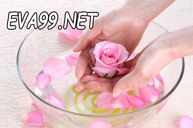 Cách sử dụng nước hoa hồng để trị mụn hiệu quả từ chị em