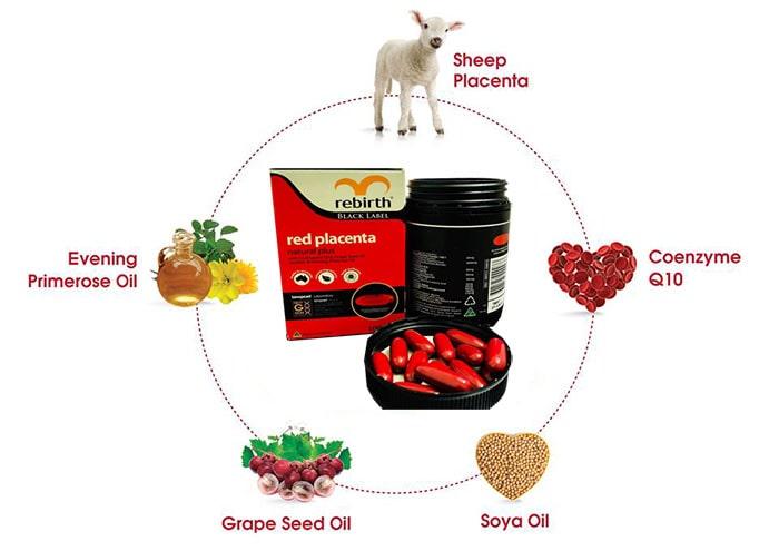 Thành phần của viên uống nhau thai cừu đỏ Rebirth Red Placenta 3000mg: